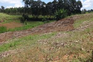 The Water Project: Mwichina Primary School -  Surrounding Farmland