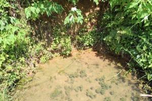 The Water Project: Kalenda A Community, Webo Simali Spring -  A Closeup At Webo Simali Spring