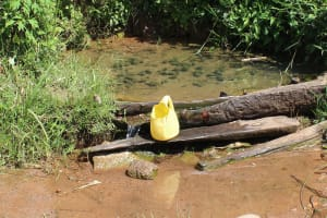 The Water Project: Kalenda A Community, Webo Simali Spring -  Container Used To Fetch Water From The Spring