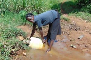 The Water Project: Musiachi Community, Mutuli Spring -  Eunice Naliaka