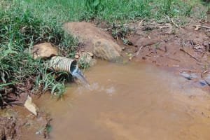 The Water Project: Musiachi Community, Mutuli Spring -  Mutuli Spring