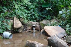 The Water Project: Mubinga Community, Mulutondo Spring -  Mulutondo Spring