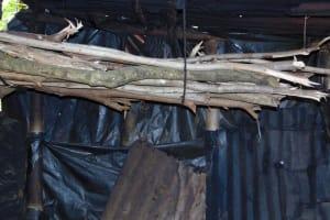 The Water Project: Mubinga Community, Mulutondo Spring -  Firewood
