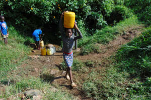 The Water Project: Rosterman Community, Lishenga Spring -  Carrying Water