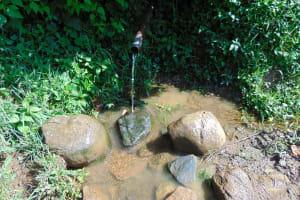 The Water Project: Rosterman Community, Lishenga Spring -  Lishenga Spring