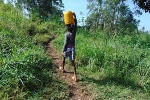 The Water Project: Rosterman Community, Lishenga Spring -  Carrying Water From The Spring