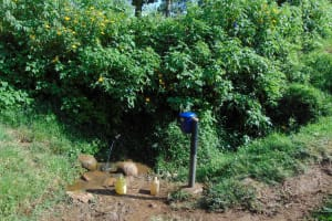 The Water Project: Rosterman Community, Lishenga Spring -  Spring