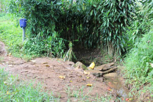 The Water Project: Imbinga Community, Imbinga Spring -  Imbinga Spring Water Reservoir