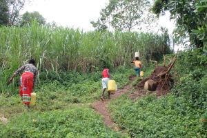The Water Project: Imbinga Community, Imbinga Spring -  Community Members Carrying Water