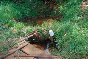 The Water Project: Jivovoli Community, Magumba Spring -  Magumba Spring