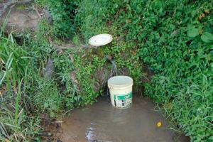 The Water Project: Buyangu Community, Mukhola Spring -  Mukhola Spring