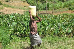 The Water Project: Emmachembe Community, Magina Spring -  Carrying Water