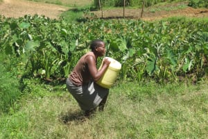 The Water Project: Emmachembe Community, Magina Spring -  Lifting Up Water Can To Take Home