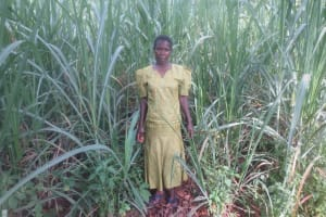 The Water Project: Emmachembe Community, Magina Spring -  Woman Stands In Her Sugarcane Field