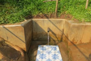 The Water Project: Handidi Community, Chisembe Spring -  Chisembe Spring Green With Grass