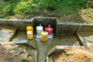 The Water Project: Chegulo Community, Yeni Spring -  Yeni Spring Gushes With Water