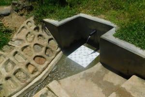 The Water Project: Chegulo Community, Werabunuka Spring -  Werabunuka Spring Green With Grass