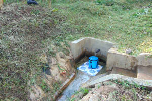 The Water Project: Ematetie Community, Weku Spring -  Weku Spring Green With Grass