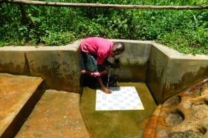 The Water Project: Koitabut Community, Henry Kichwen Spring -  Shaline Jeruto Getting A Drink From The Spring