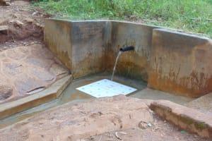 The Water Project: Upper Visiru Community, Wambosani Spring -  Wambosani Spring Green With Grass