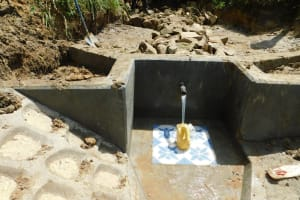 The Water Project: Ikonyero Community, Amkongo Spring -  Clean Water Begins To Flow