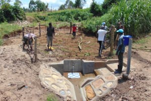 The Water Project: Shihungu Community, Shihungu Spring -  Fence Construction