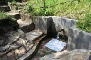 The Water Project: Ewamakhumbi Community, Yanga Spring -  Yanga Spring Green With Grass