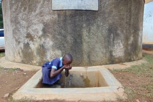 The Water Project: Shihimba Primary School -  Purity Drinks From The Rain Tank