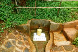 The Water Project: Asimuli Community, John Omusembi Spring -  John Omusembi Spring Green With Grass