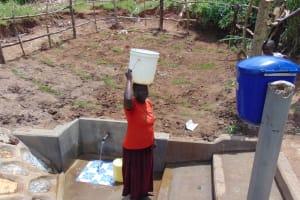 The Water Project: Shihungu Community, Shihungu Spring -  Ready To Walk Home