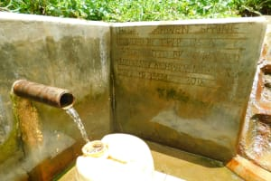 The Water Project: Koitabut Community, Henry Kichwen Spring -  Clear Water From Henry Kichwen Spring