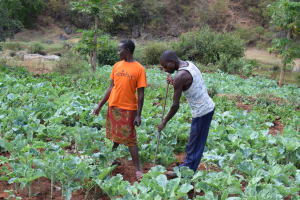 The Water Project: Masola Community A -  Farmers With Their Crops