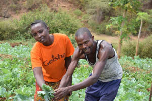 The Water Project: Masola Community A -  Improved Harvest