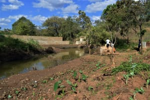 The Water Project: Masaani Community -  Farmland Near Dam