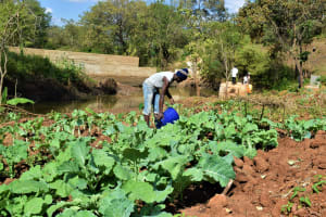 The Water Project: Masaani Community -  Green