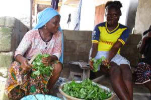 The Water Project: Lungi, Masoila, #3 Kamara Street -  Slicing Potato Leaves