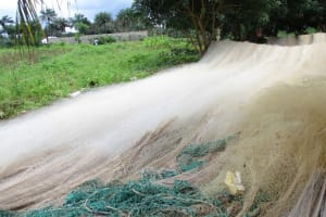 The Water Project: Lungi, Lungi Town, Holy Cross Primary School -  Fishing Net