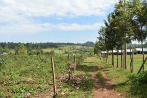 The Water Project: Khwihondwe SA Primary School -  Surrounding Area