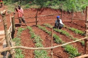 The Water Project: Mushina Community, Shikuku Spring -  Grass Planting