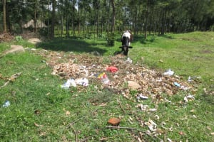 The Water Project: St. Gerald Mayuge Secondary School -  Cow Snacks Near Compost Pit