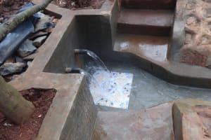 The Water Project: Mushina Community, Shikuku Spring -  Clean Water Begins To Flow