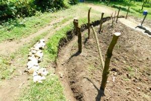 The Water Project: Bung'onye Community, Shilangu Spring -  Fencing