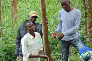 The Water Project: Mushina Community, Shikuku Spring -  Handwashing Demonstration