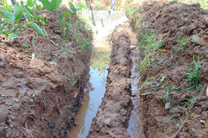 The Water Project: Shamakhokho Community, Imbai Spring -  Drainage Channel