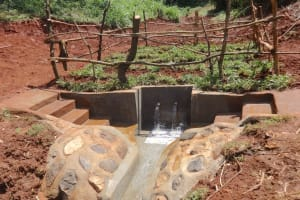 The Water Project: Mushina Community, Shikuku Spring -  Completed Shikuku Spring