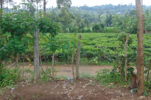 The Water Project: Mutiva Primary School -  Surrounding Area