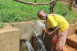 The Water Project: Mushina Community, Shikuku Spring -  Splash