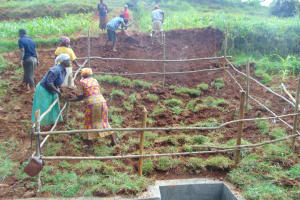 The Water Project: Shamakhokho Community, Imbai Spring -  Grass Planting