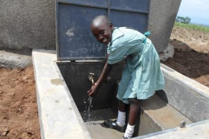 The Water Project: Mukangu Primary School -  All Smiles At The Tank