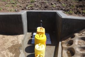 The Water Project: Bungaya Community, Charles Khainga Spring -  Clean Water Flowing